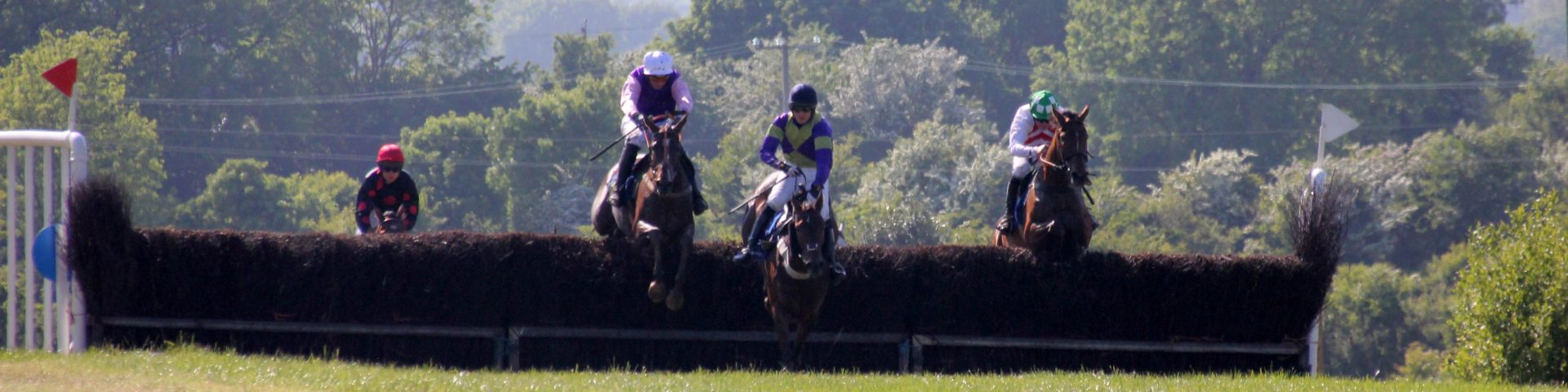 Kinsale Point to Point